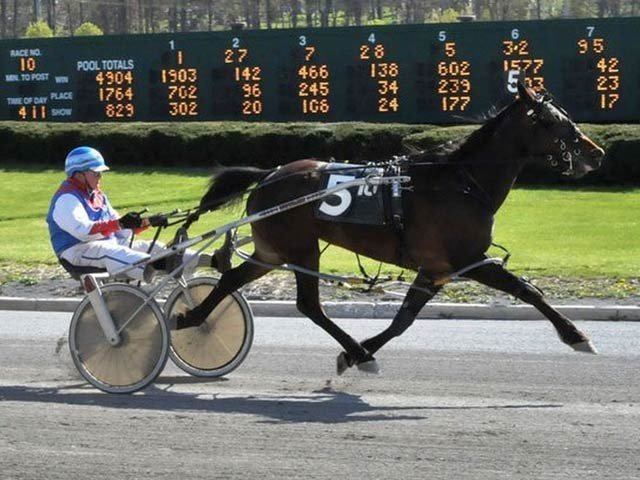 The World's Oldest Man Wins A Horse-drawn Carriage Racethe